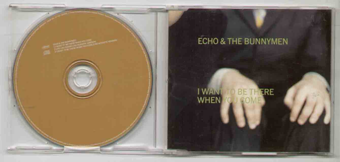 Echo & The Bunnymen - I Want To Be There