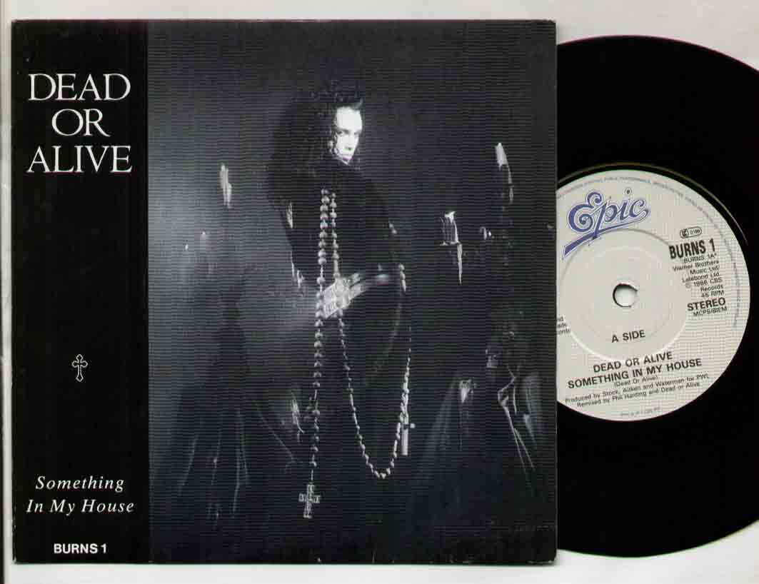 Dead Or Alive Something In My House 7''