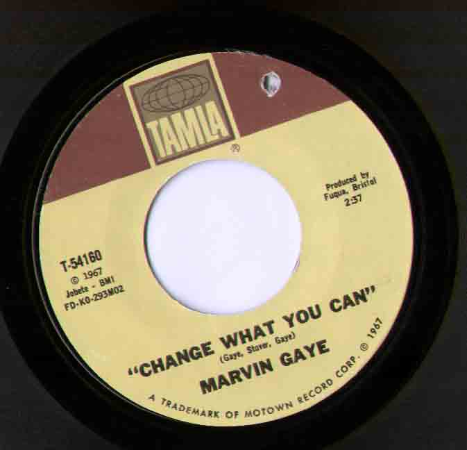 Marvin Gaye - Change What You Can