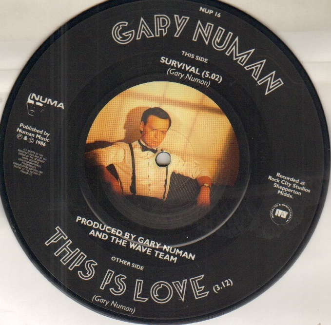 THIS IS LOVE - picture disc